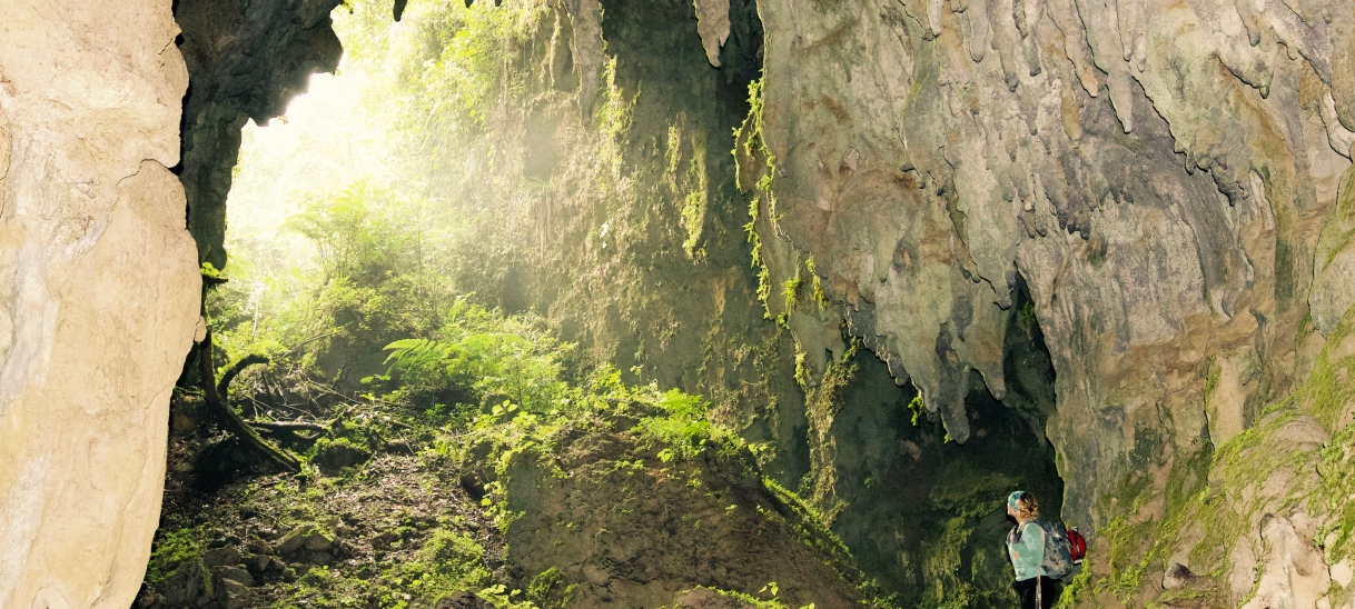 Cueva Catedral